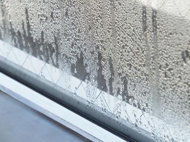 【結露対策】冬の窓につく結露を簡単に防止する方法